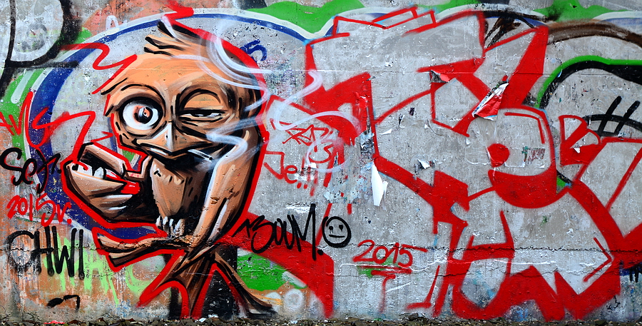 Poznań Graffiti Ptak