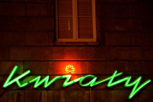 """Neon """"Kwiaty"""" - Wrocław"""